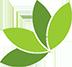 leaf-ico